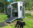 Ifor Williams Horse Trailer - 2