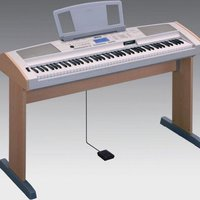 Yamaha portable grand dgx 500