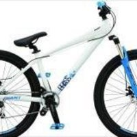 GIANT BRASS 1 dirtbike/ mtb