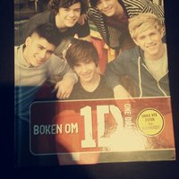 One direction bok