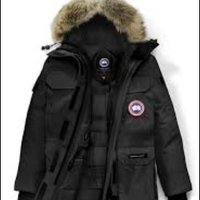 Expedition canada goose