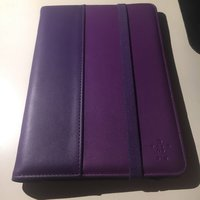 iPad mini case (Belkin)