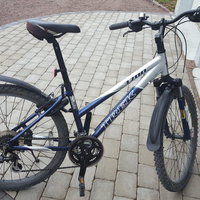 Mountainbike Trek 3700