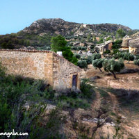 Land in Spain (Maella)