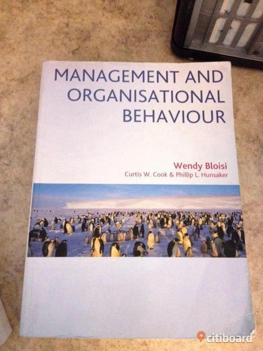 organisational behaviour of ikea As you may know i'm a big fan of the organisational culture at ikea it is a fabulous case study in how a strong culture can be a sustainable competitive.