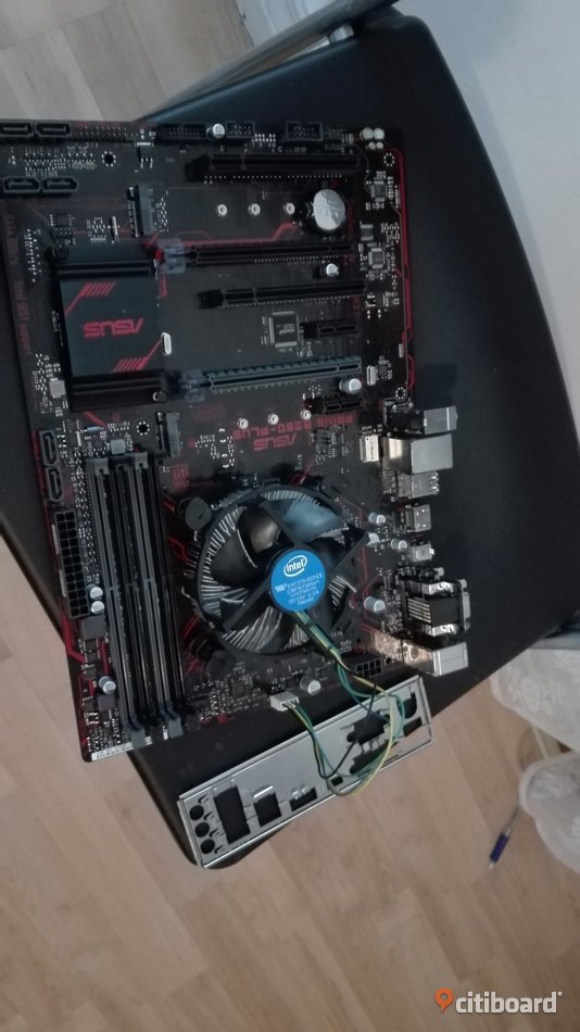 ASUS Prime B250-PLUS (moderkort) / Intel Pentium G4560 / be quiet! System Power 8 400W Sundsvall