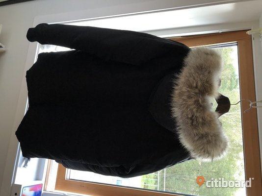 Canada Goose Expedition Parka Strlk. Large 52-54 (L) Varberg
