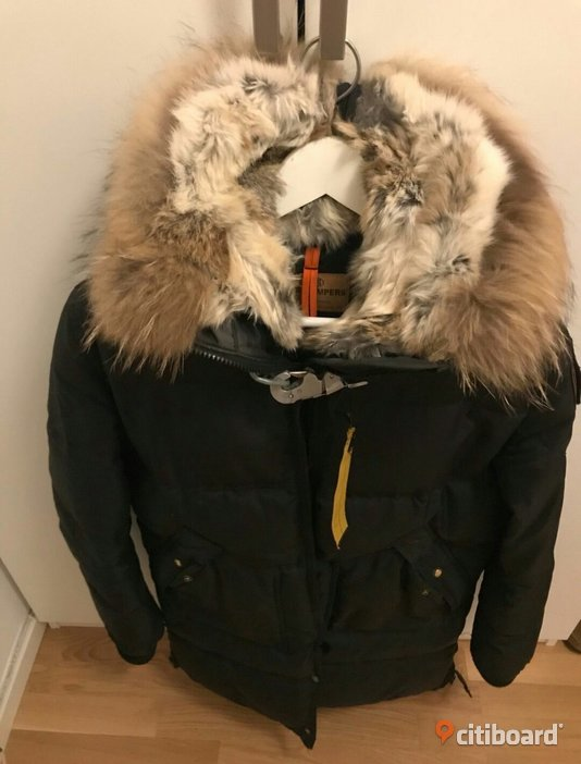 Parajumpers Long Bear  36-38 (S) Norberg