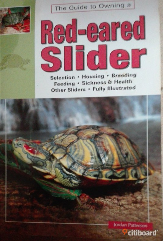 The Guide to Owning a Red-eared Slider Uppsala Uppsala