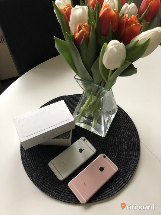 iPhone 6 och iPhone 6s Halland Falkenberg